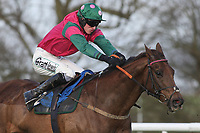 The Red Balloon ridden by Adam Wedge in action during the Connolly's Red Mills Horsefeed National Hunt Novices' Handicap Hurdle