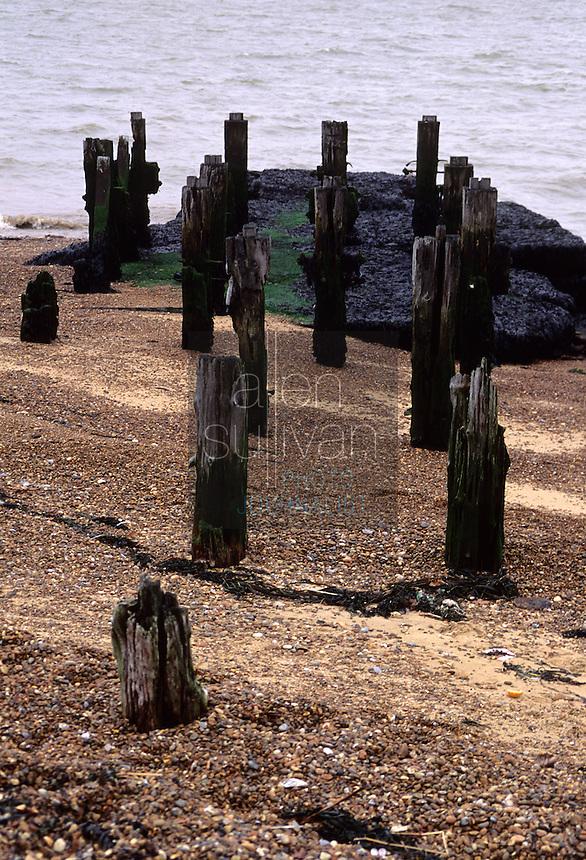 Dock pilings near Ipswich, England, 1994.