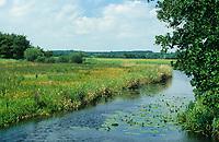 Alte-Sorge-Schleife zwischen Bergenhusen und Meggerdorf am Schöpfwerk Fünfmühlen, Eider-Treene-Sorge Niederung, Schleswig-Holstein