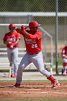 St. Louis Cardinals Leandro Cedeno (26) during a Minor League Spring Training Intrasquad game on March 28, 2019 at the Roger Dean Stadium Complex in Jupiter, Florida.  (Mike Janes/Four Seam Images)