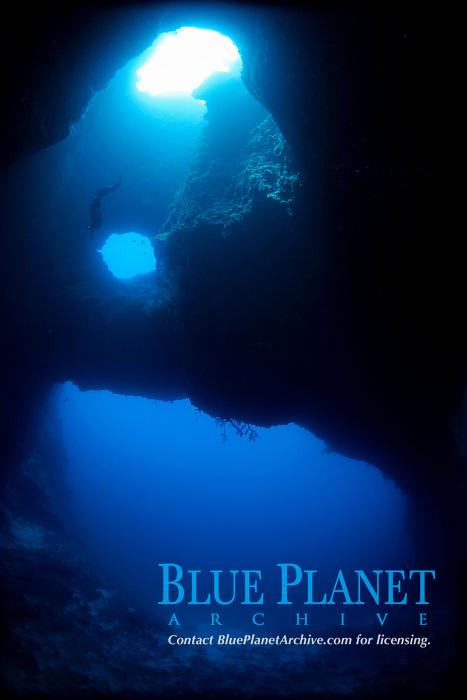Ai freediving through the blue holes, Palau, Micronesia, Pacific ocean, Asia