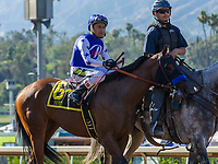ARCADIA, CA. JUNE 17:  #6 Faypien ridden by Rafael Bejarano in the post parade of the Summertime Oaks (Grade ll) on June 17, 2017 at Santa Anita Park in Arcadia, CA (Photo by Casey Phillips/Eclipse Sportswire/Getty Images)