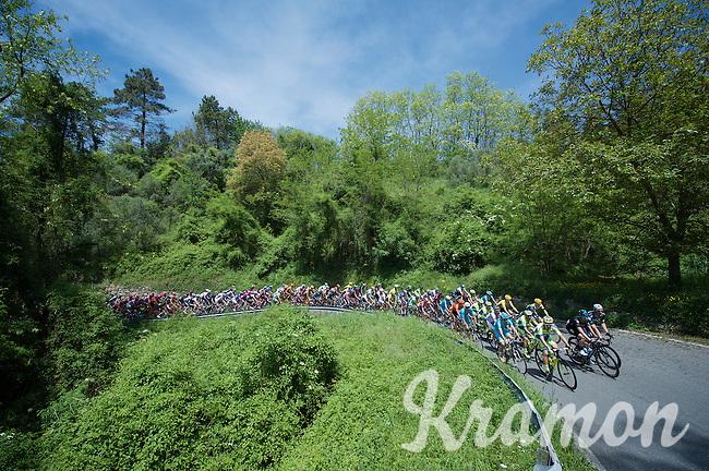 peloton up the first climb of the day: Colla di Velva (536m)<br /> <br /> 2015 Giro<br /> st4: Chiavari - La Spezia (150km)