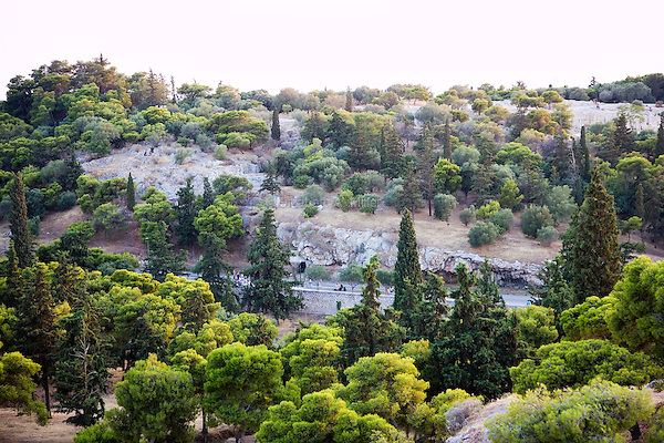 Trees near the Acropolis in Athens, Greece on July 2, 2013.