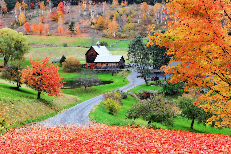 Sleepy Hollow Ford >> Fall Foliage At Farm Along Cloudland Road Vermont Charles Ford