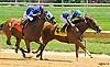Long May You Run winning at Delaware Park on 8/10/16