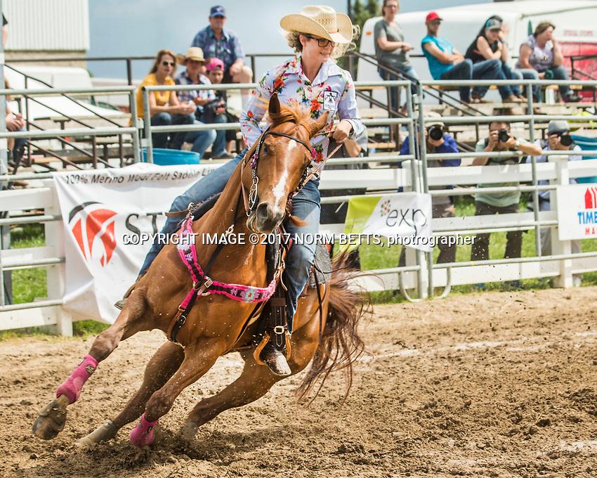 RAM Rodeo Orangeville 2017
