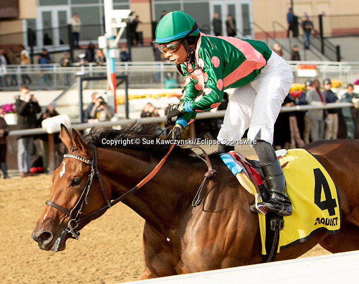DECEMBER 01, 2018 : Positive Spirit, ridden by Manuel Franco, wins the Demoiselle Stakes at Aqueduct Racetrack on December 24, 2018 in Ozone Park, NY.  Sue Kawczynski/ESW/CSM