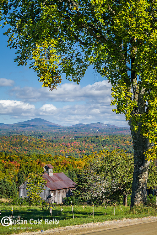 Fall foliage in Burke, Northeast Kingdom, VT