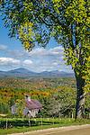 Fall foliage in Burke, Northeast Kingdom, VT