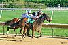 Purpose of Life winning at Delaware Park on 10/3/15
