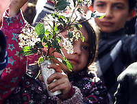 Pictured: A little girl holding a few tree branches Thursday 03 March 2016<br /> Re: Migrants have closed off the railway track at the Greek Fyro Macedonian border in Idomeni, Greece,