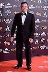 Eduard Fernandez attends to the Red Carpet of the Goya Awards 2017 at Madrid Marriott Auditorium Hotel in Madrid, Spain. February 04, 2017. (ALTERPHOTOS/BorjaB.Hojas)