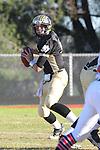 Palos Verdes, CA 11/12/10 - Brock Dale (Peninsula #7) in action during the Palos Verdes - Peninsula varsity football game at Peninsula High School.
