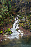 USA, Oregon, Santiam Pass, The Santiam River which is a tributary of the Willamete River is located off of Highway 20