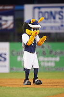 Binghamton Mets mascot Buddy the Bee during a game against the Trenton Thunder on May 29, 2016 at NYSEG Stadium in Binghamton, New York.  Trenton defeated Binghamton 2-0.  (Mike Janes/Four Seam Images)