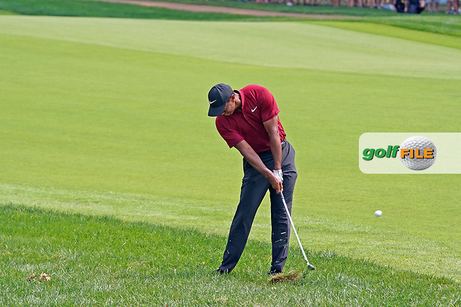 Tiger Woods (USA) hits out of the rough on the 7th hole during the final round of the 100th PGA Championship at Bellerive Country Club, St. Louis, Missouri, USA. 8/12/2018.<br /> Picture: Golffile.ie | Brian Spurlock<br /> <br /> All photo usage must carry mandatory copyright credit (© Golffile | Brian Spurlock)