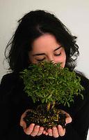 Un albero tra le mani di una ragazza a simboleggiare la tutela e protezione ambientale..A tree in the hands of young woman to symbolize the environmental protection..