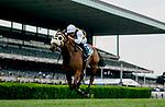 June 7, 2019 : #3, Amade, ridden by jockey Flavien Prat, wins the Belmont Gold Cup Invitational on Belmont Stakes Festival Friday at Belmont Park in Elmont, New York. Scott Serio/Eclipse Sportswire/CSM