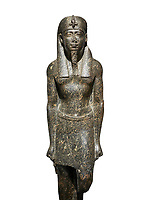 Ancient Egyptian statue of a Ptolomaic king in pharaonic regalia, granodiorire, Ptolemaic Period (332-30BC). Egyptian Museum, Turin. white background<br /> <br /> The Ptolomaic king is dressed a a pharaoh wearing a nemes headdress and a false beard . Drovetti Collection, Cat 1384