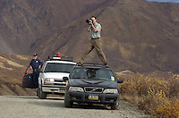 Wildlife watchers and photographers look for the best view of a grizzly bear (not pictured) alongside Denali Park Road on Sept. 15, 2006.