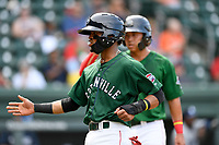 Second baseman Kervin Suarez (36) of the Greenville Drive is greeted after scoring a run in a game against the Asheville Tourists on Sunday, June 3, 2018, at Fluor Field at the West End in Greenville, South Carolina. Greenville won, 7-6. (Tom Priddy/Four Seam Images)