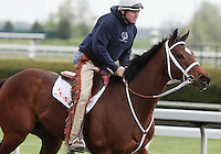 Havre De Grace and Larry Jones train at Keeneland during Breakfast at the works.  April 14, 2012.