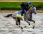 September 2, 2020: NY Traffic exercises as horses prepare for the 2020 Kentucky Derby and Kentucky Oaks at Churchill Downs in Louisville, Kentucky. The race is being run without fans due to the coronavirus pandemic that has gripped the world and nation for much of the year. Scott Serio/Eclipse Sportswire/CSM