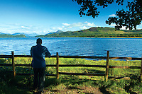 Ben Lomond, Conic Hill and Loch Lomond National Nature Reserve from Net Bay Loch Lomond and the Trossachs National Park