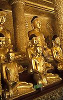 Asie/Birmanie/Myanmar/Yangon: Pagode Paya Shwedagon - Détail Bouddhas