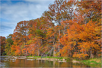 The Pedernales River is ablaze in color in November. This little gem seems to always have nice color, and each Autumn I look forward to visiting this park to enjoy and photograph the changing cypress trees.
