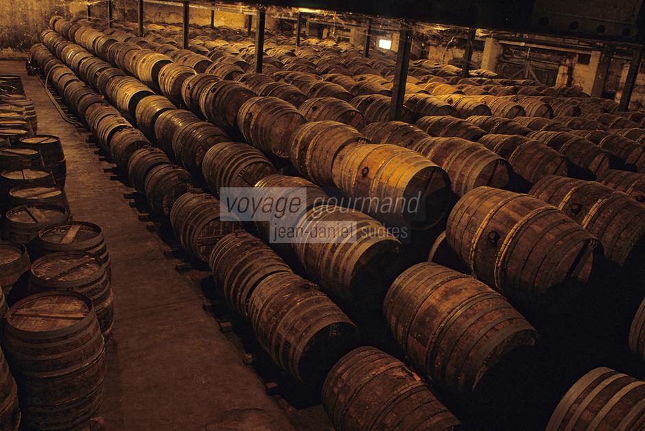 Europe/France/Poitou-Charentes/16/Charente/Cognac: Chais à barriques chez Rémy Martin