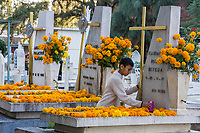 Oaxaca; Mexico; North America.  Day of the Dead Celebration.  Boy Placing a Candle on a Family Member's Grave, Decorated with Marigolds, the traditional flower used on this occasion.