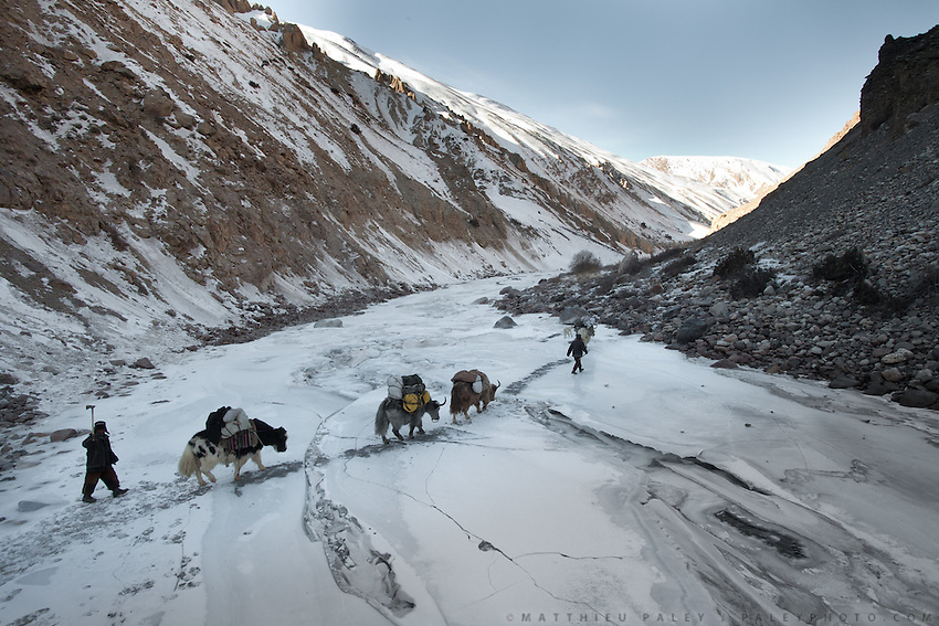 Yak caravan progressing on the frozen river..Between Zang Kuk and  Zard-e Bar shepherd house..Going back down to Sarhad village with a yak caravan led by 2 Wakhi traders: Shur Ali and Roz Ali...Trekking down the Wakhan frozen river, the only way down to leave the high altitude Little Pamir plateau, home of the Afghan Kyrgyz community.