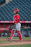 AZL Angels catcher Willian Mendoza (3) during an Arizona League game against the AZL Indians 2 at Tempe Diablo Stadium on June 30, 2018 in Tempe, Arizona. The AZL Indians 2 defeated the AZL Angels by a score of 13-8. (Zachary Lucy/Four Seam Images)