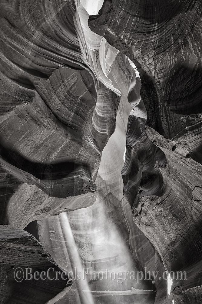 Only a gleam of light now exposes the carved out area of the slot canyonin this black and white. The Upper Antelope Canyon is visited each year by thousand of tourist since it is the most accessable. It is beautiful to see all the twist and turns of the canyon as you can image as the flash flood run through creating this wonderful twisth and turns giving these wonderful form that we love. It is this forced erosion that creates this delicate erosion of the canyon walls expose there layers of sandstone sediment and create this in turn with the natural light that enters gives these wall there beautiful colors.