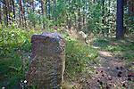 Leśno, 2011-07-09. Kurhan i kamienne kręgi na ścieżce lichenologiczno-kulturowej w Leśnie