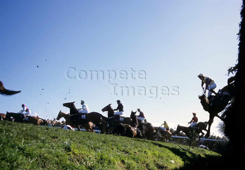 Horses jump and fall at large steeplechase fence