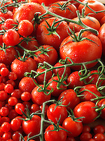 Mixed beefsteak, cheery, plum & tom tom vive tomatoes