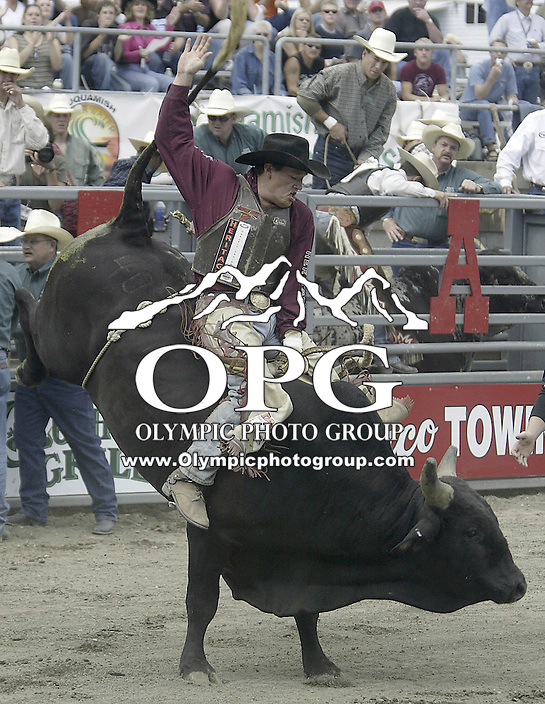"""29 August, 2004:  PRCA Rodeo Bull Rider Steven Turner riding the bull """"Forty Below"""" during the PRCA 2004 Extreme Bulls competition in Bremerton, WA."""