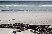 The corpse of a pregnant African migrant lays on the shore of Zawara after it was washed up by the tide during the night. From the 10th to the 17th of June 2016, two hundred and twenty-six bodies of illegal migrants, asylum seekers and refugees were washed up on the Zuwara and Sabratah shores. Twenty-six pregnant women and one toddler were among the dead.