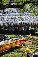 Hawaiian outrigger canoes and a thatched canoe house at Keoua Honaunau Canoe Club, Honaunau, Big Island.