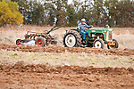 Antique tractors plowing a field in fall during the Branch 158 EDGE & TA Fall Plow Day and Plowing Seminar near Pleasant Grove, Calif...Silmer Scheidel Farm..1960s Oliver 550