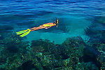 A snorkeler explores the shallow reef, Yap, Federated States of Micronesia, Pacific Ocean