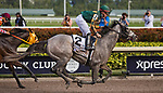 HALLANDALE BEACH, FL - JANUARY 27: on Pegasus World Cup Invitational Day at Gulfstream Park Race Track on January 27, 2018 in Hallandale Beach, Florida. (Photo by Liz Lamont/Eclipse Sportswire/Getty Images)