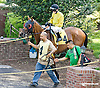 Royal Currier before The Hockessin Stakes at Delaware Park racetrack on 6/18/14