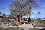 Desert Breamar's Serene Circle