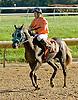 Secret Treasour winning at Delaware Park on 10/11/12
