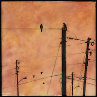 Encaustic painting of sunset sky with mixed media photo transfer of birds on telephone poles and telephone lines