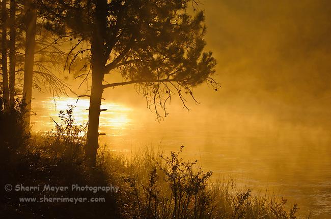 Sunrise and fog on the Deschutes River, La Pine State Park, Oregon.
